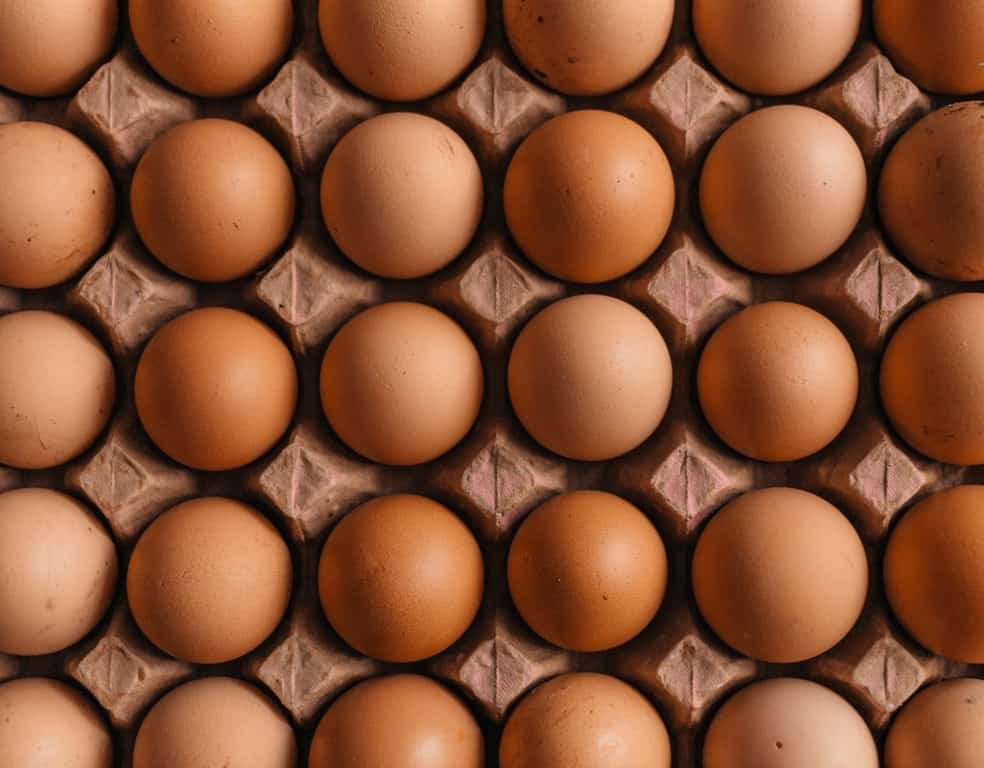 The parable of eggs explains what health insurance is, as risk is shared among all the eggs